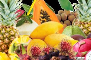 Набор тропических фруктов